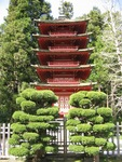 Japanese Teagarden