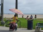 Vendors and Healers at Venice Beach, Los Angeles by Mihaela Friedlmeier