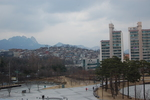 A cold afternoon in Seoul by Kelsey Ciagala